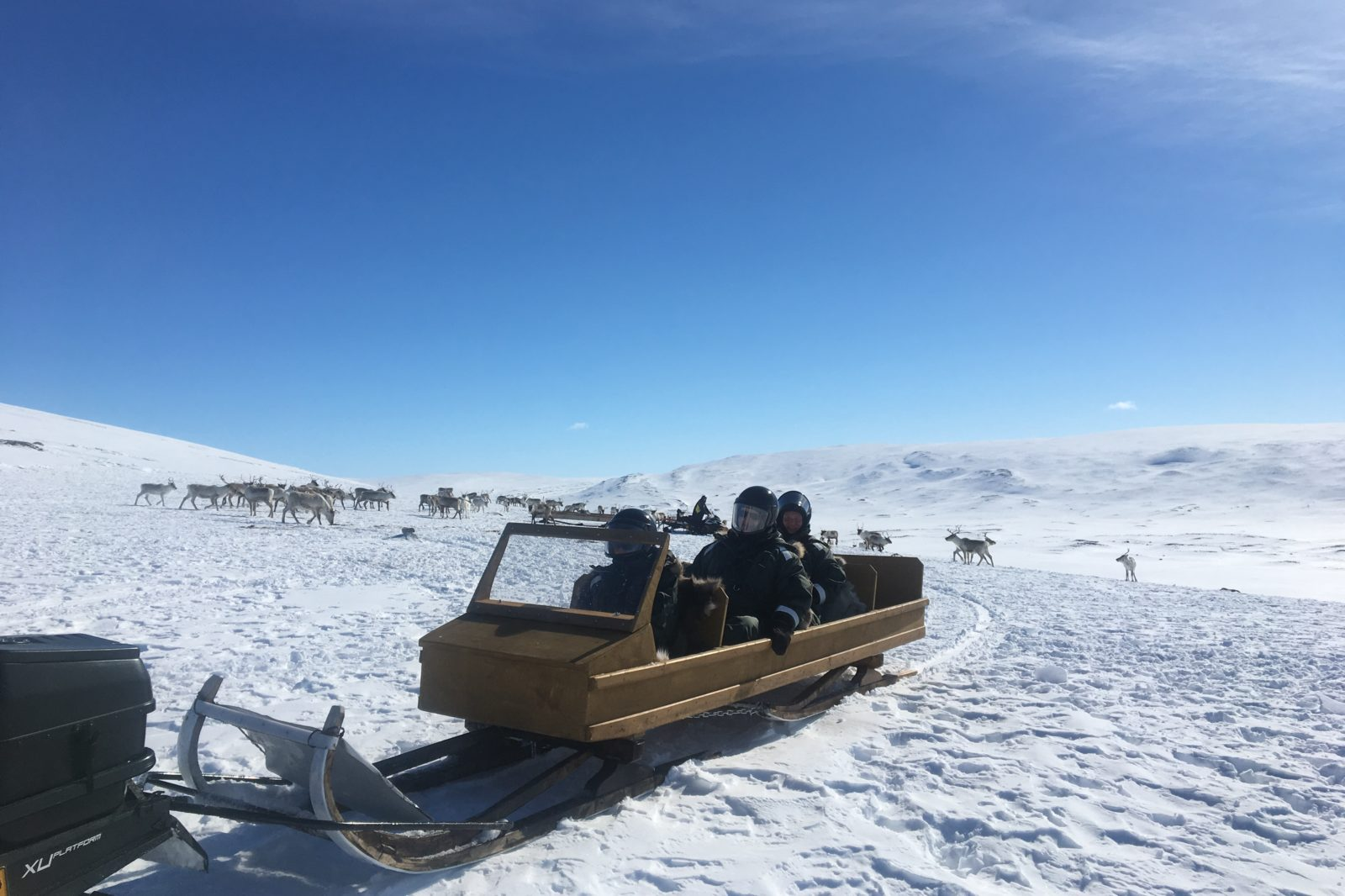 Arctic Land Adventure people sitting in a sledge in winter
