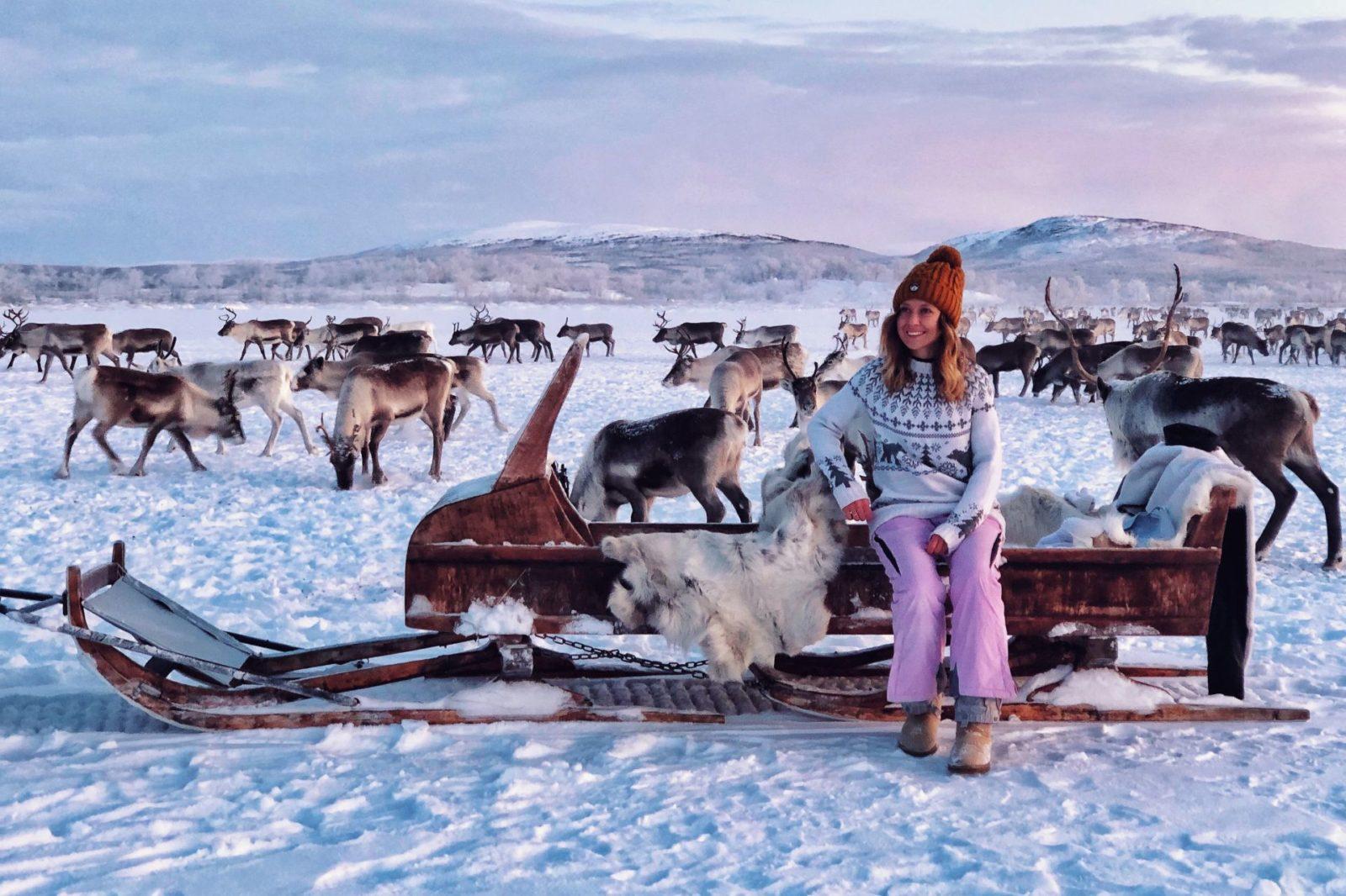 Arctic Land Adventure reindeer ranch