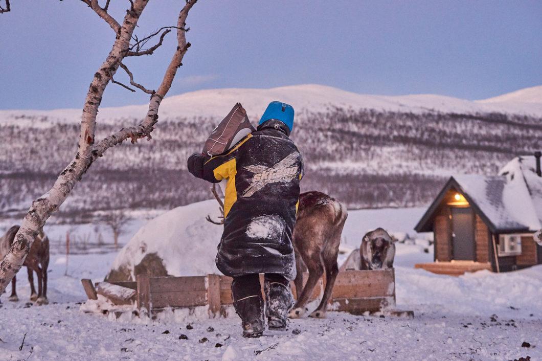 Arctic Land Adventure kestävää matkailua porotilalla